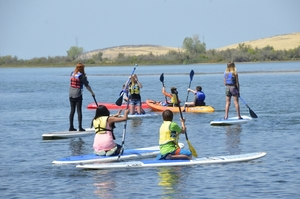 Forebay Activity Grades 4-12