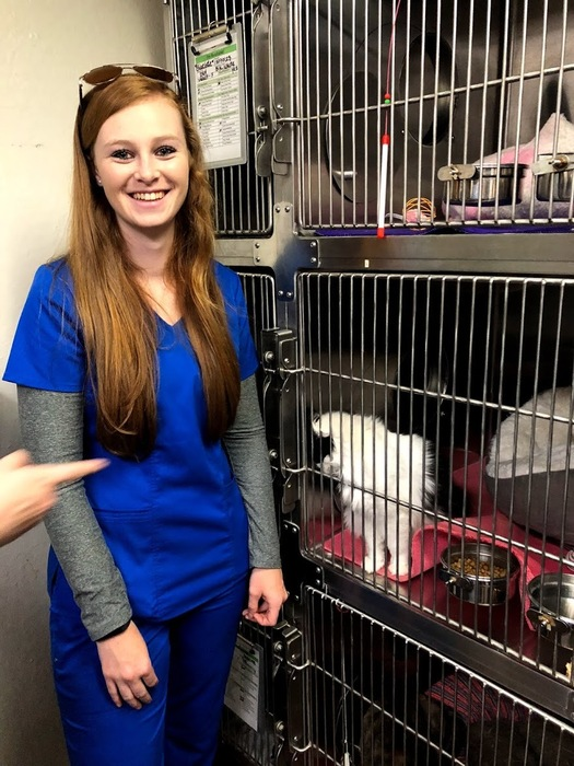 Students visit the Chico Animal Shelter
