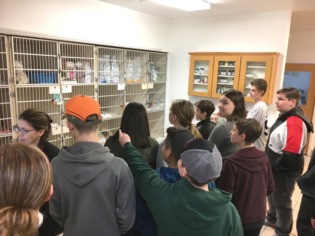 Students visit a veterinarian clinic